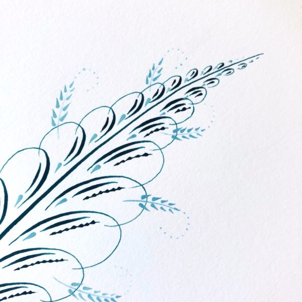 Calligraphy feather