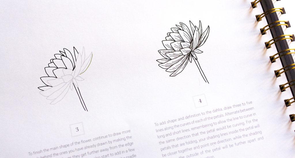 How to draw modern florals kalligrafie